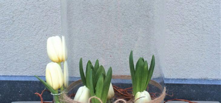 Dinsdag 6 en woensdag 7 februari workshop voorjaarsgeluk met hyacinten en tulpjes